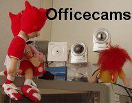 Webcams im B�ro der BBoxBBS